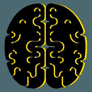 seo brain